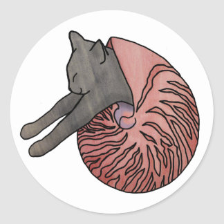 Cat in a shell sticker - Nautilus
