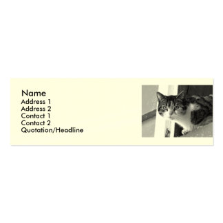 Cat in black and white Double-Sided mini business cards (Pack of 20)