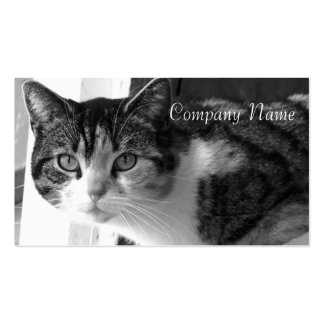 Cat in Black and white business cards