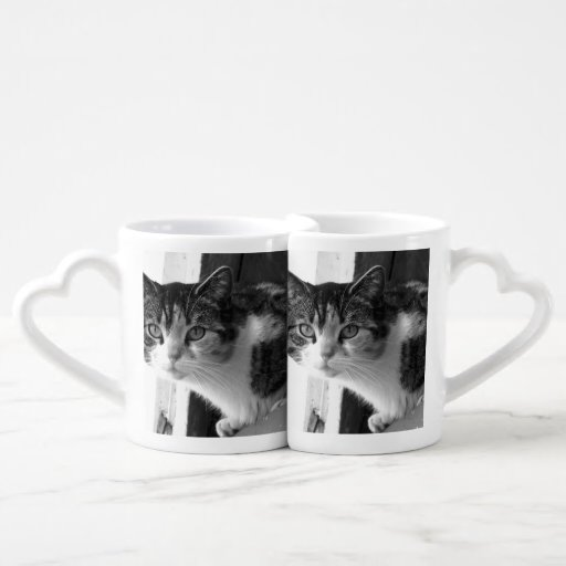 Cat in black and white lovers mugs