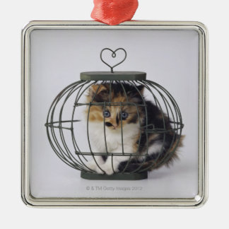 Cat in cage christmas ornament
