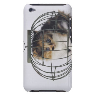 Cat in cage iPod touch case