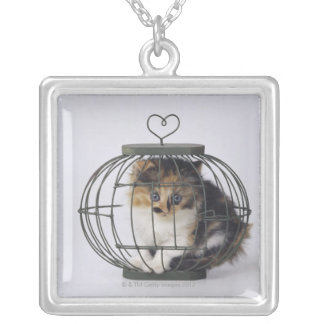 Cat in cage silver plated necklace