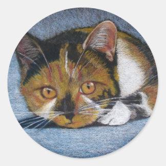 CAT IN COLOR PENCIL STICKERS