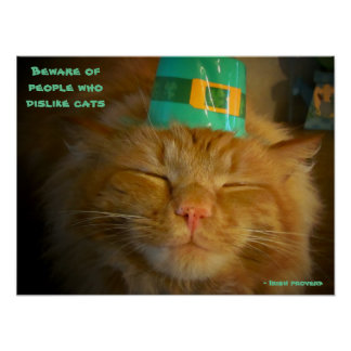 Cat in Irish Hat with proverb Poster