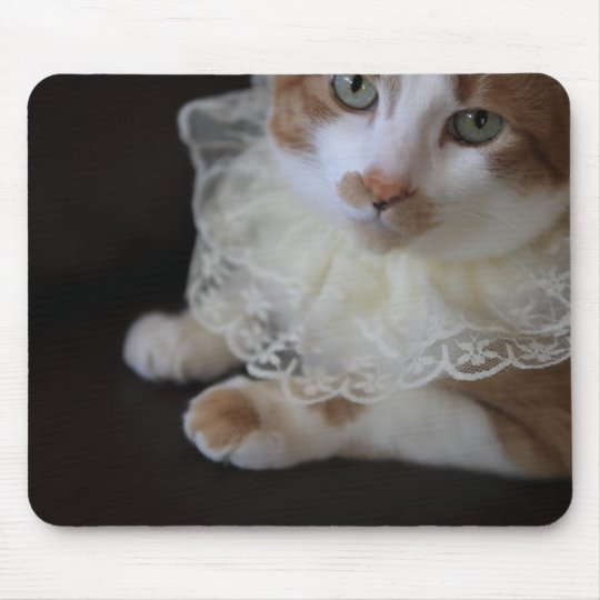 Cat in lacy collar mouse mat