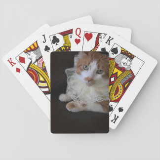 Cat in lacy collar playing cards