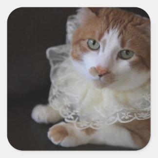 Cat in lacy collar square sticker