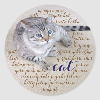 Cat in Many Languages Classic Round Sticker