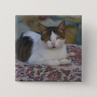 Cat in Marina of Kusadasi along the Aegean Sea, 15 Cm Square Badge