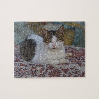 Cat in Marina of Kusadasi along the Aegean Sea, Jigsaw Puzzle