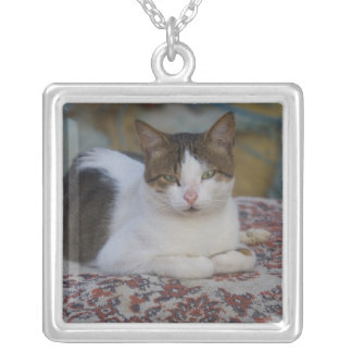 Cat in Marina of Kusadasi along the Aegean Sea, Silver Plated Necklace