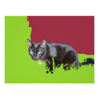 cat in play yard poster