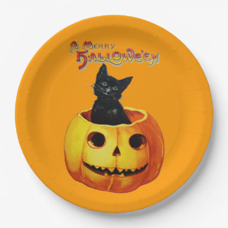 Cat in Pumpkin Halloween Plates 9 Inch Paper Plate