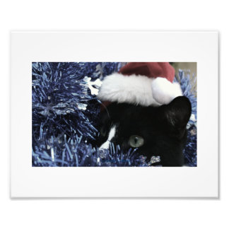 Cat in santa hat hiding in blue tinsel peering out photo