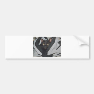 cat in the bag bumper sticker