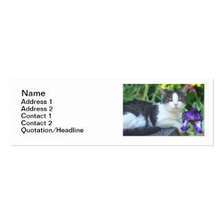 Cat in the garden pack of skinny business cards