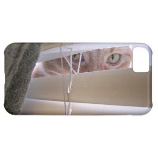 Cat in the Window iPhone 5C Case