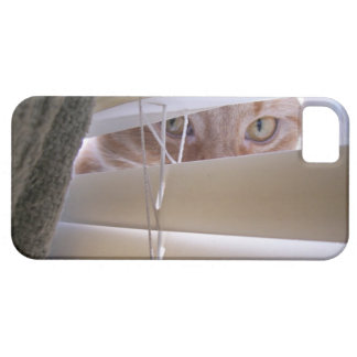 Cat in the Window iPhone 5 Cover