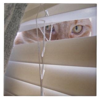 Cat in the Window Ceramic Tiles
