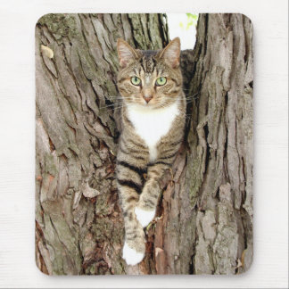 Cat in tree mouse pad