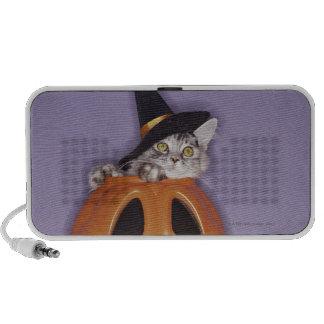 Cat in witch hat inside pumpkin travelling speaker