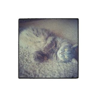 Cat-Instagram Stone Magnet