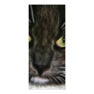 Cat 4x9.25 Paper Invitation Card