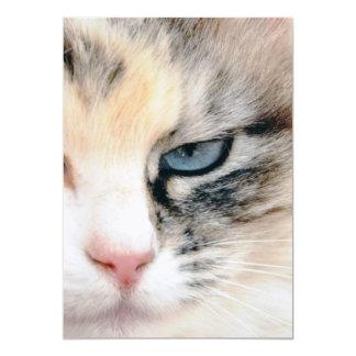 Cat 13 Cm X 18 Cm Invitation Card