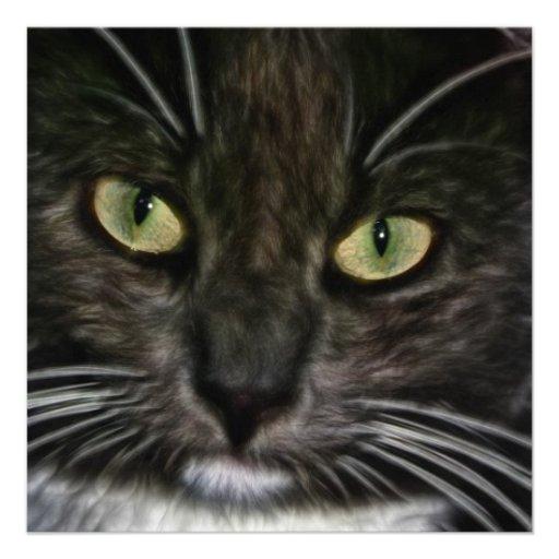 Cat Custom Invitation