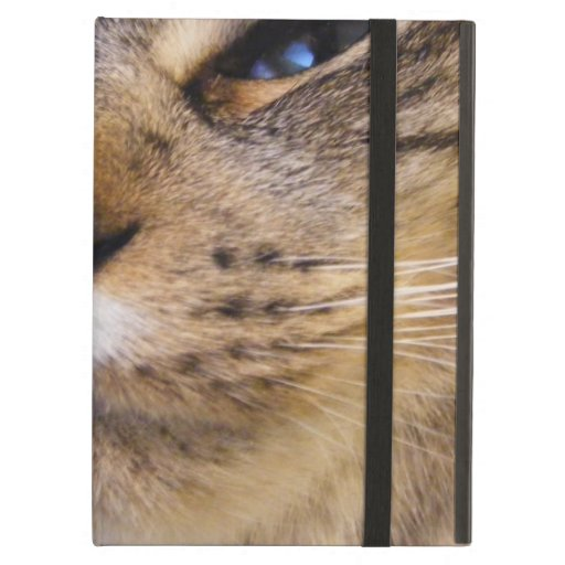 Cat iPad Covers