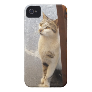 Cat iPhone 4 case-mate