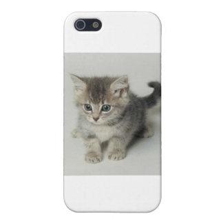 CAT iPhone 5/5S CASES
