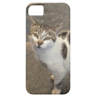 Cat iPhone 5 case-mate