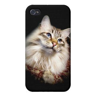 cat iPhone 4/4S covers