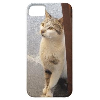 Cat iPhone case-mate