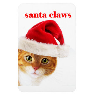 Cat is Santa Claws Rectangular Photo Magnet