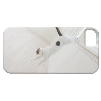 Cat jumping barely there iPhone 5 case