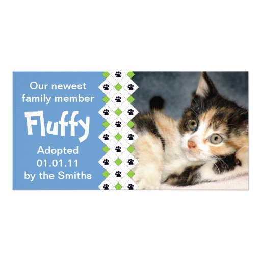 Cat/Kitten Adoption Announcement Photo Card Template