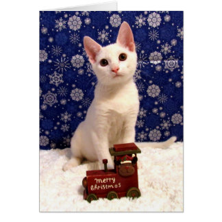 Cat, Kitten, Christmas, Rescue Card