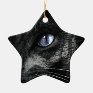 Cat Kitten Eye Stare Look Animal Ceramic Star Decoration