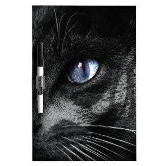 Cat Kitten Eye Stare Look Animal Dry Erase Boards