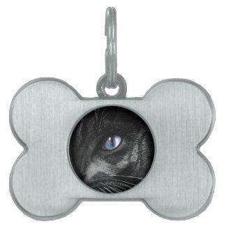 Cat Kitten Eye Stare Look Animal Pet Tag
