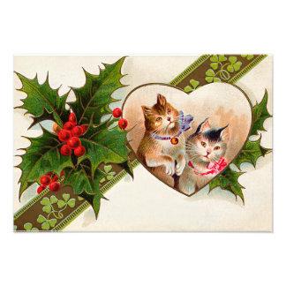 Cat Kitten Heart Shamrock Holly Photo