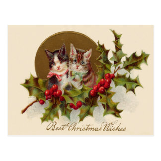 Cat Kitten Holly Winterberry Postcard