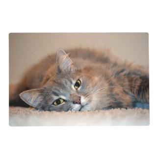 Cat Laminated Place Mat