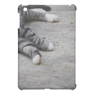 Cat laying on sidewalk iPad mini cover