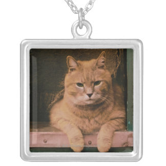 Cat Leans on Windowsill Silver Plated Necklace