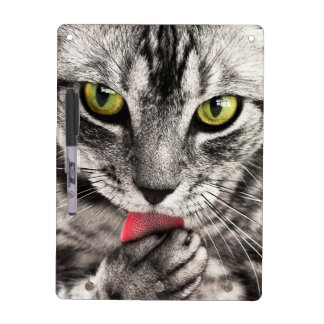 Cat Look Dry Erase Board