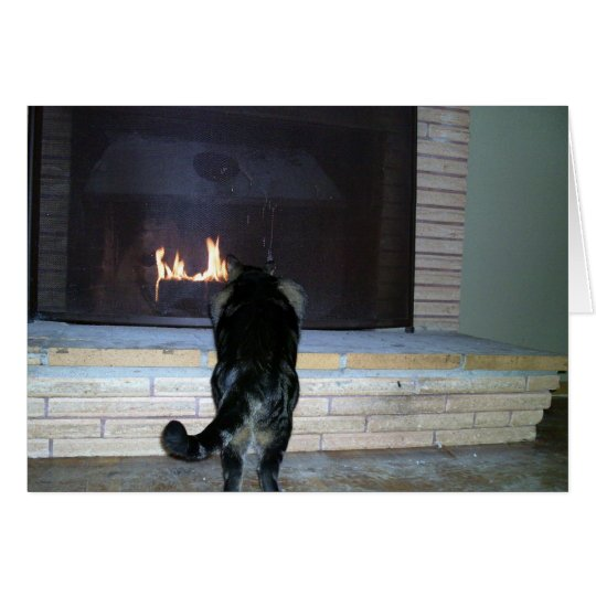 Cat looking at fireplace card